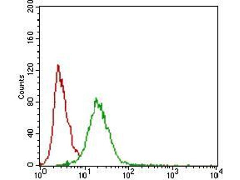 Image no. 2 for anti-CD22 Molecule (CD22) (AA 621-725) antibody (ABIN1724887)