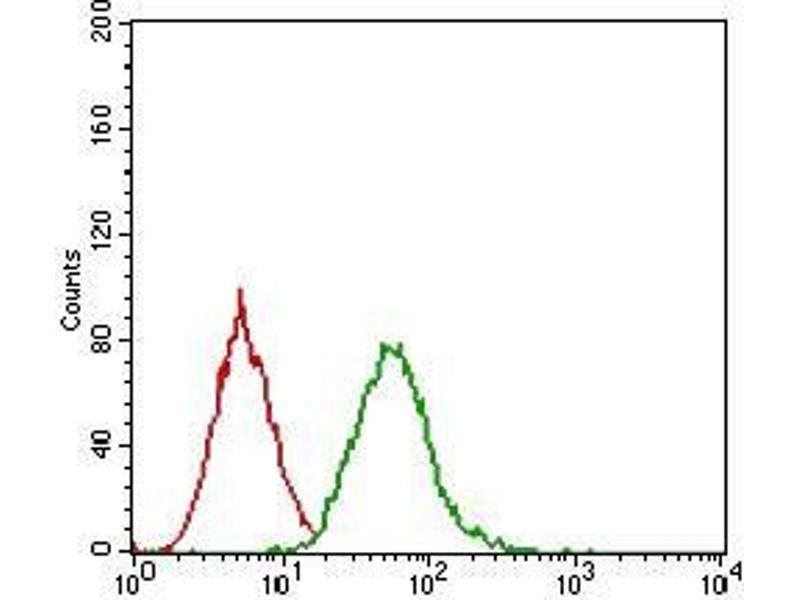Flow Cytometry (FACS) image for anti-EGFR antibody (Epidermal Growth Factor Receptor) (AA 693-893) (ABIN1724889)