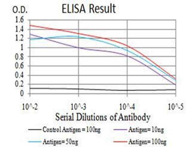 ELISA image for anti-Mitogen-Activated Protein Kinase Kinase 3 (MAP2K3) (AA 1-138) antibody (ABIN5542528)