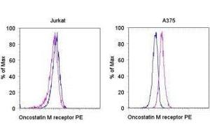 Flow Cytometry (FACS) image for anti-Oncostatin M Receptor antibody (OSMR)  (PE) (ABIN1032172)