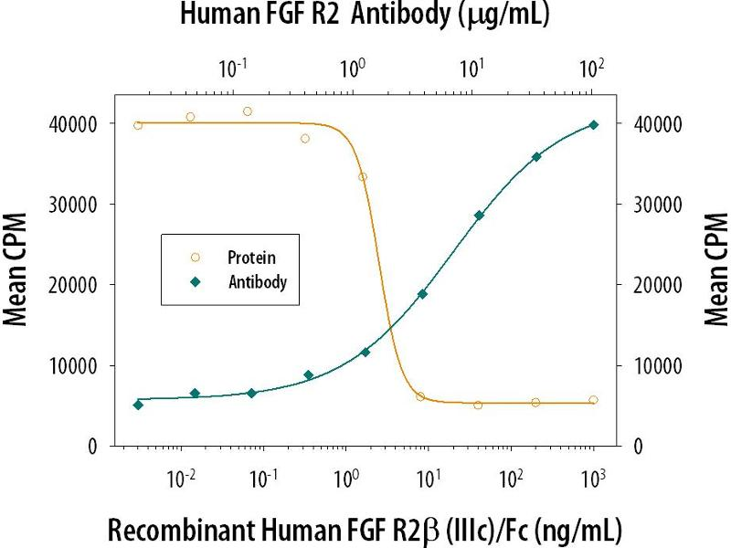 Neutralization (Neut) image for anti-Fibroblast Growth Factor Receptor 2 (FGFR2) antibody (ABIN4900757)