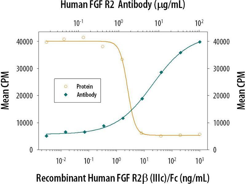 Neutralization (Neut) image for anti-Fibroblast Growth Factor Receptor 2 (FGFR2) antibody (ABIN4900757)