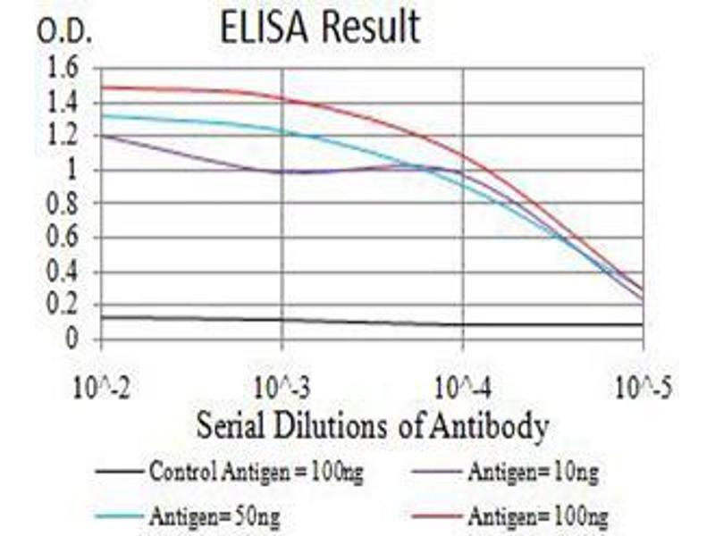 Image no. 6 for anti-Estrogen Receptor 1 (ESR1) (AA 2-185) antibody (ABIN5542593)