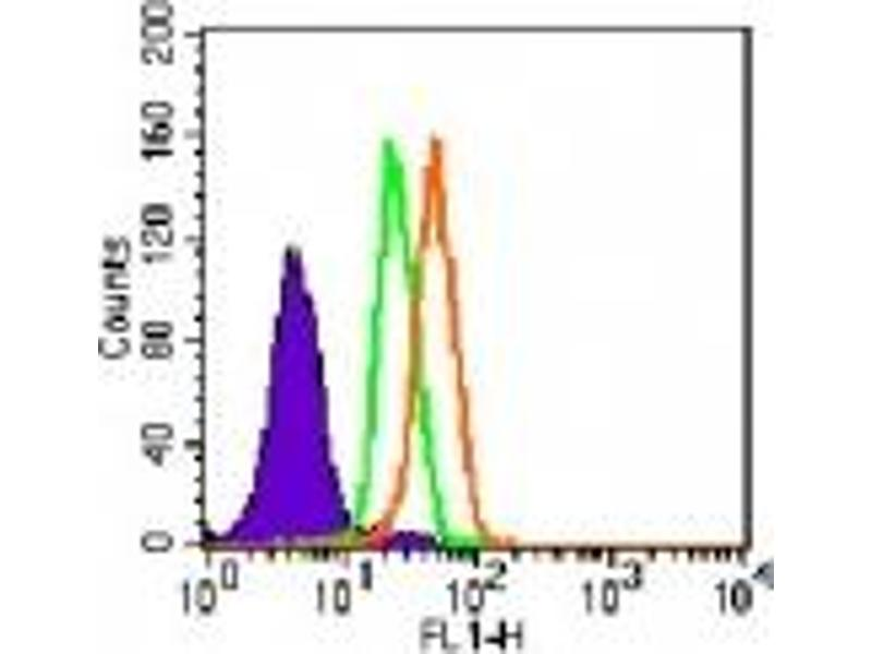 image for anti-Toll-Like Receptor 5 (TLR5) (AA 700-800) antibody (ABIN208231)