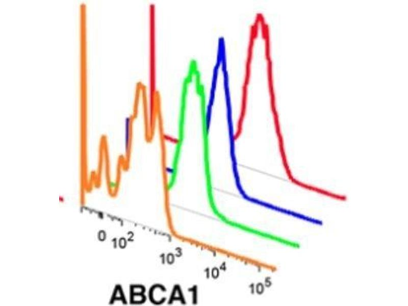 Flow Cytometry (FACS) image for anti-ABCA1 antibody (ATP-Binding Cassette, Sub-Family A (ABC1), Member 1) (AA 1100-1300) (ABIN189744)