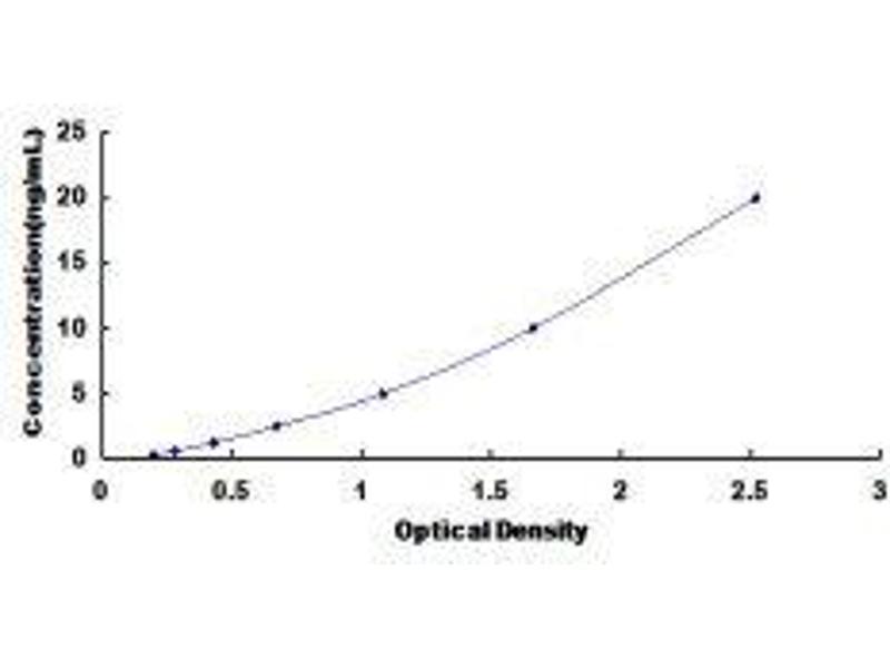 Cyclin-Dependent Kinase 8 (CDK8) ELISA Kit