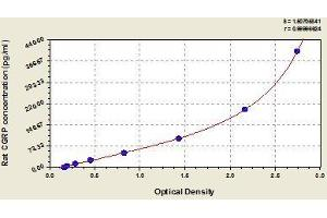 Image no. 1 for Calcitonin-Related Polypeptide alpha (CALCA) ELISA Kit (ABIN368056)