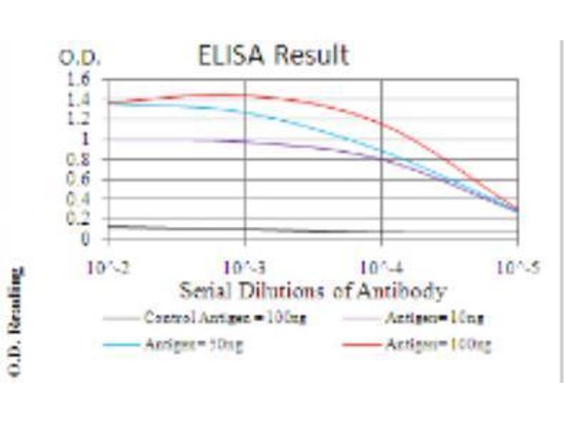 ELISA image for anti-Annexin V antibody (Annexin A5) (ABIN4280832)