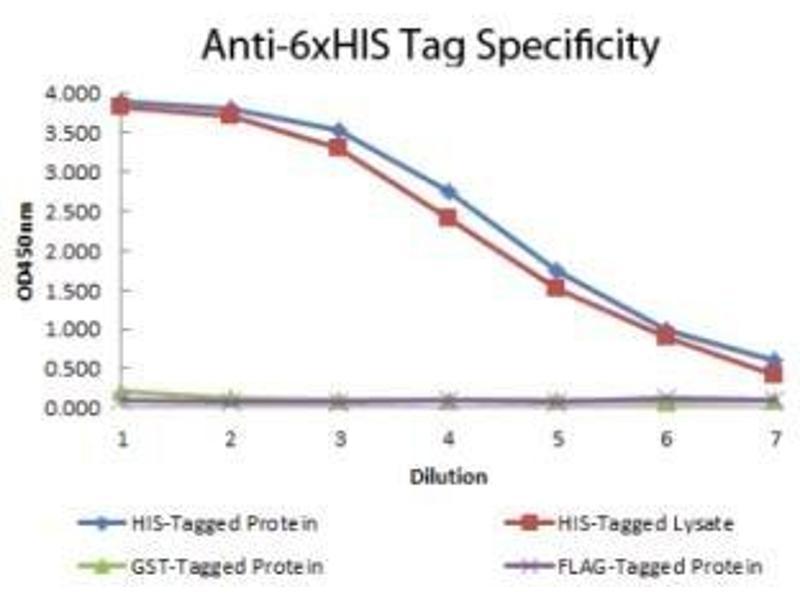 ELISA image for anti-His Tag antibody (HRP) (ABIN4276996)