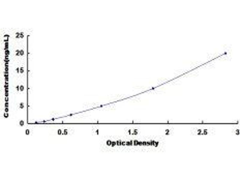 Calcium Channel, Voltage-Dependent, T Type, alpha 1H Subunit (CACNA1H) ELISA Kit