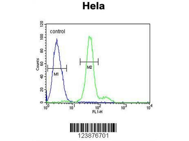 Flow Cytometry (FACS) image for anti-ELOVL Fatty Acid Elongase 5 (ELOVL5) (AA 271-299), (C-Term) antibody (ABIN653926)