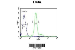 Flow Cytometry (FACS) image for anti-ELOVL Fatty Acid Elongase 5 (ELOVL5) (AA 271-299), (C-Term) antibody (ABIN653926)