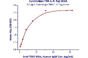 Image no. 1 for Hepatitis A Virus Cellular Receptor 2 (TIM 3) (AA 22-201) (Active) protein (Fc Tag) (ABIN5526613)