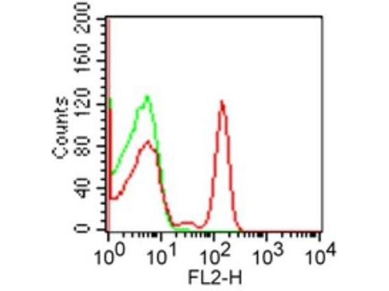 Flow Cytometry (FACS) image for anti-CD4 Antikörper (CD4 Molecule)  (PE) (ABIN4260771)
