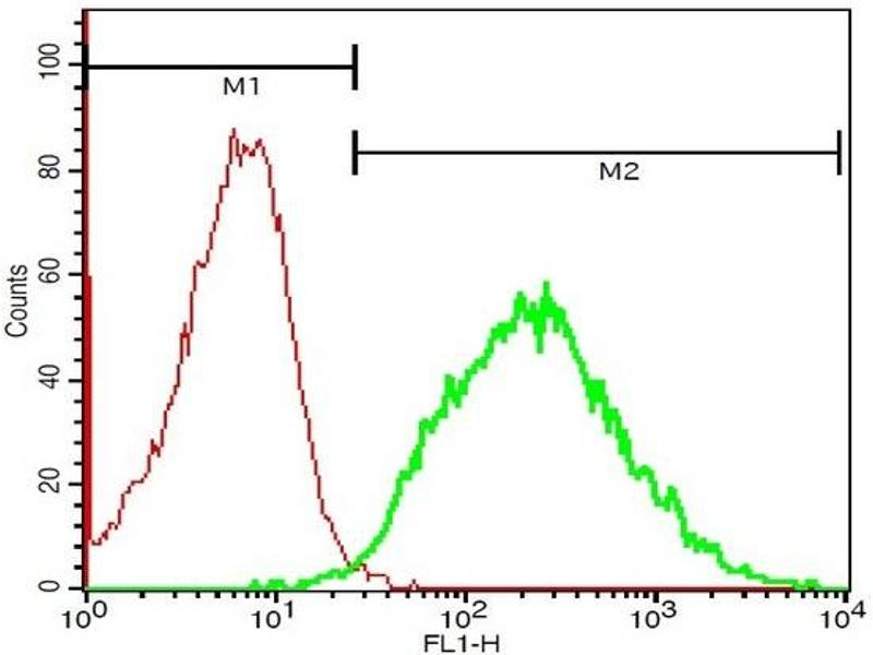Flow Cytometry (FACS) image for anti-IL1R2 antibody (Interleukin 1 Receptor, Type II) (ABIN747758)