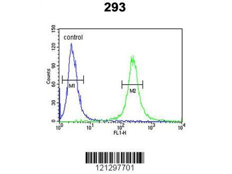 Flow Cytometry (FACS) image for anti-Very Low Density Lipoprotein Receptor (VLDLR) (AA 484-510), (Center) antibody (ABIN651940)