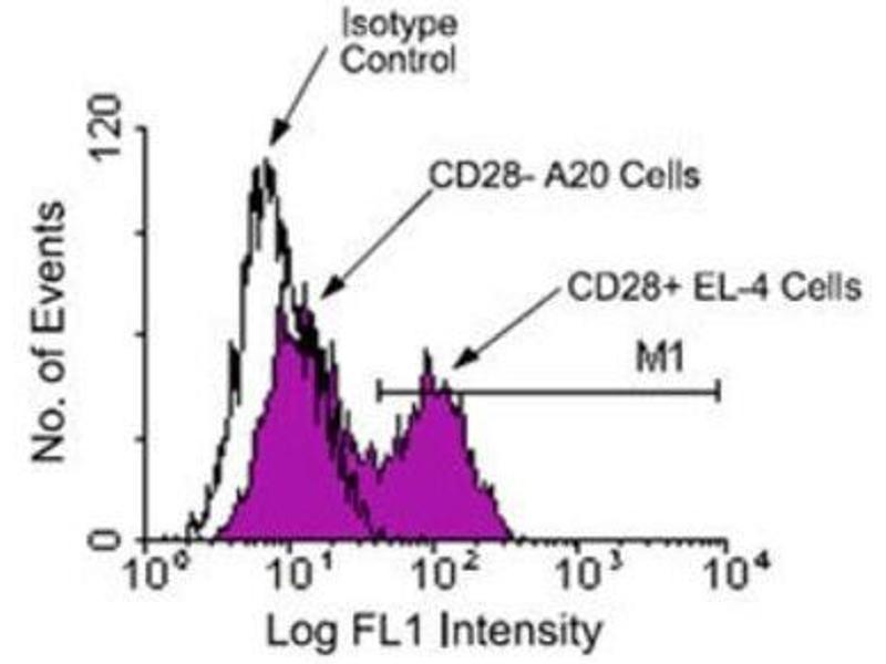 Flow Cytometry (FACS) image for anti-CD28 (CD28) antibody (ABIN439922)