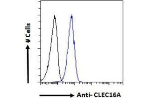 Image no. 2 for anti-C-Type Lectin Domain Family 16, Member A (CLEC16A) (Internal Region) antibody (ABIN238572)