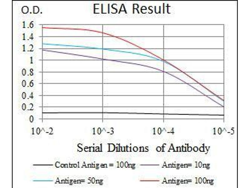 ELISA image for anti-CCAAT/enhancer Binding Protein (C/EBP), alpha (CEBPA) antibody (ABIN969507)