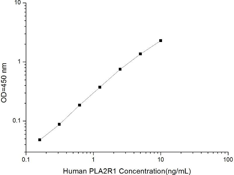 phospholipase A2 Receptor 1, 180kDa (PLA2R1) ELISA Kit (2)
