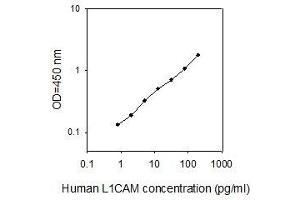 Image no. 1 for L1 Cell Adhesion Molecule (L1CAM) ELISA Kit (ABIN2703287)