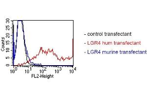 Image no. 4 for anti-Leucine-Rich Repeat Containing G Protein-Coupled Receptor 4 (LGR4) antibody (ABIN1720913)