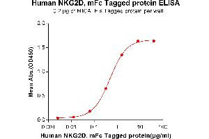 Image no. 3 for Killer Cell Lectin-Like Receptor Subfamily K, Member 1 (KLRK1) protein (mFc Tag) (ABIN6961134)