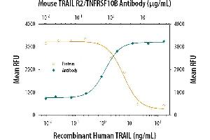 Neutralization (Neut) image for anti-Tumor Necrosis Factor Receptor Superfamily, Member 10b (TNFRSF10B) (AA 53-177) antibody (ABIN4900408)