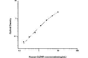 Image no. 1 for Claudin 5 (CLDN5) ELISA Kit (ABIN6962352)