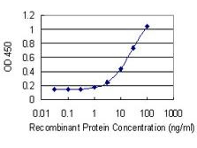 ELISA image for anti-Kallikrein 2 (KLK2) (AA 1-262), (full length) antibody (ABIN517352)