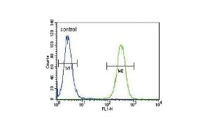 Flow Cytometry (FACS) image for anti-INHBA antibody (Inhibin, beta A) (AA 85-112) (ABIN655078)