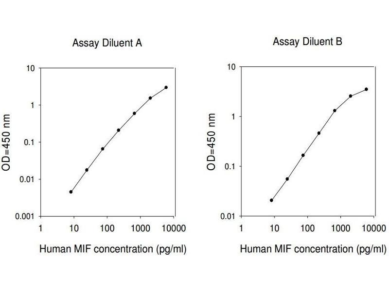 Macrophage Migration Inhibitory Factor (Glycosylation-Inhibiting Factor) (MIF) ELISA Kit