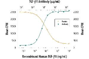 Neutralization (Neut) image for anti-Transforming Growth Factor, beta 1 (TGFB1) antibody (ABIN4900860)