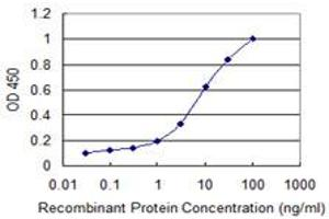 Image no. 5 for anti-Carbonyl Reductase 3 (CBR3) (AA 180-277) antibody (ABIN514083)