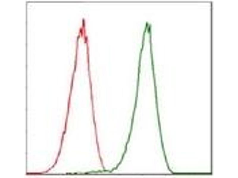 Flow Cytometry (FACS) image for anti-CDK2 antibody (Cyclin-Dependent Kinase 2) (ABIN1106645)