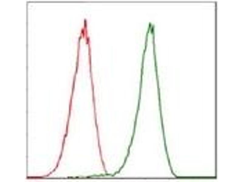 Flow Cytometry (FACS) image for anti-Cyclin-Dependent Kinase 2 (CDK2) antibody (ABIN1106645)