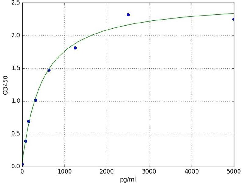 V-Akt Murine Thymoma Viral Oncogene Homolog 3 (Protein Kinase B, Gamma) (AKT3) ELISA Kit