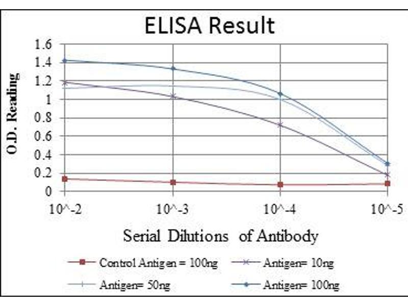 ELISA image for anti-Mitogen-Activated Protein Kinase Kinase Kinase 2 (MAP3K2) antibody (ABIN1108129)
