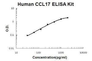 Image no. 1 for Chemokine (C-C Motif) Ligand 17 (CCL17) ELISA Kit (ABIN921088)