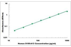 Image no. 1 for S100 Calcium Binding Protein A13 (S100A13) ELISA Kit (ABIN5526815)