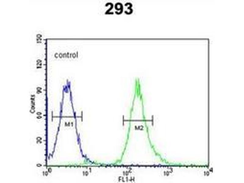 Flow Cytometry (FACS) image for anti-Syntaxin 1A (Brain) (STX1A) (AA 36-65), (N-Term) antibody (ABIN955037)