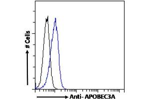 Image no. 3 for anti-Apolipoprotein B mRNA Editing Enzyme, Catalytic Polypeptide-Like 3A (APOBEC3A) (Internal Region) antibody (ABIN238645)