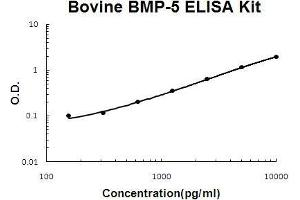 Image no. 1 for Bone Morphogenetic Protein 5 (BMP5) ELISA Kit (ABIN5510524)