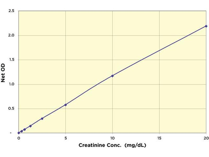 image for Urinary Creatinine Detection Kit (ABIN577638)
