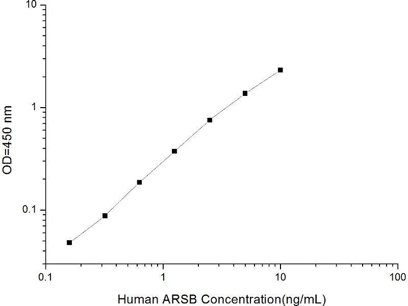 Arylsulfatase B (ARSB) ELISA Kit (2)