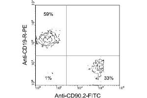 Flow Cytometry (FACS) image for anti-CD90 antibody (THY1)  (FITC) (ABIN371030)