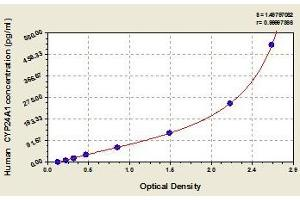 Image no. 1 for Cytochrome P450, Family 24, Subfamily A, Polypeptide 1 (CYP24A1) ELISA Kit (ABIN857719)