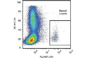 Flow Cytometry (FACS) image for anti-LAMP1 antibody (Lysosomal-Associated Membrane Protein 1)  (PE) (ABIN638446)