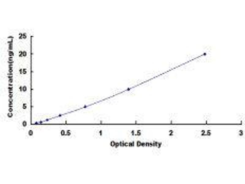Adenylate Cyclase 5 (ADCY5) ELISA Kit