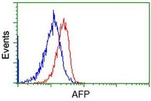 Image no. 1 for anti-alpha-Fetoprotein (AFP) antibody (ABIN1496485)